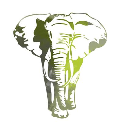 Auf Elefantenjagd mit Interhunt