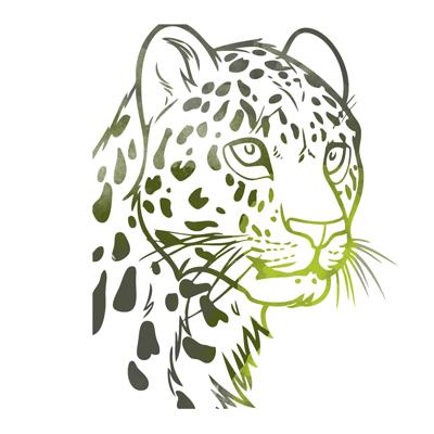 Auf Leopardenjagd mit Interhunt