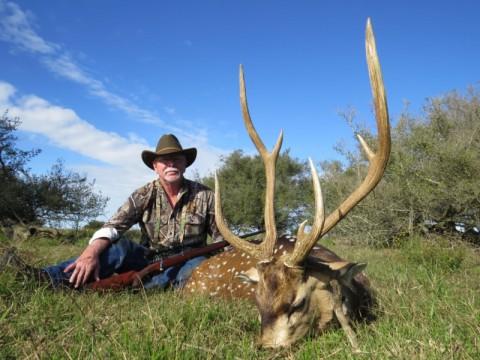 Jagd auf Axishirsch in Argentinien - Interhunt - jagen weltweit
