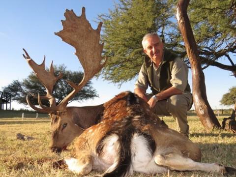 Jagd auf Damhirsch in Argentinien - Interhunt - jagen weltweit