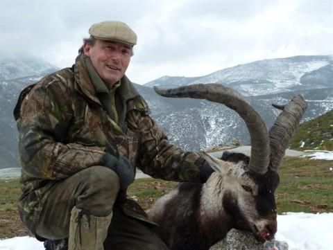 Erfolgreiche Jagd auf Gredos in Spanien - Interhunt - jagen weltweit