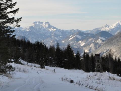 Jagdrevier im Winter in Österreich - Interhunt - jagen weltweit