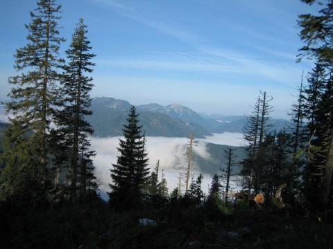 Jagdrevier im Herbst in Österreich - Interhunt - jagen weltweit
