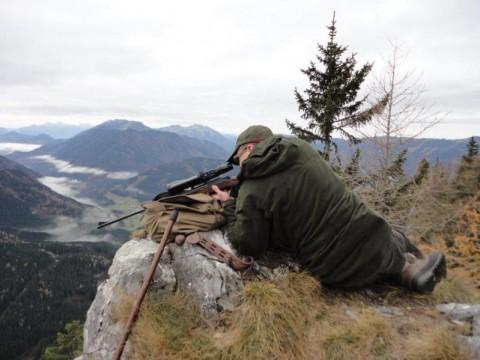 Auf Jagd in Österreich - Interhunt - jagen weltweit