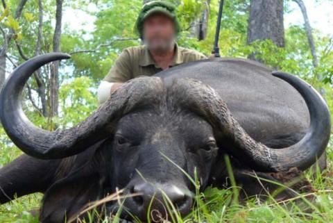 agd auf Kaffernbüffel in Tansania - Interhunt - jagen weltweit