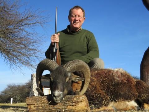 Jagd auf Muffelwidder in Argentinien - Interhunt - jagen weltweit