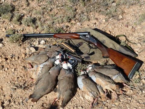 Jagen in Spanien