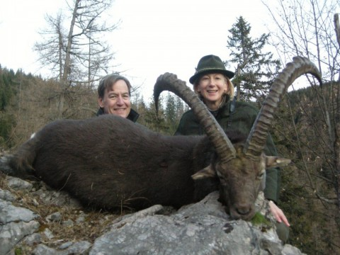 Jagd auf Steinbock in Österreich - Interhunt - jagen weltweit