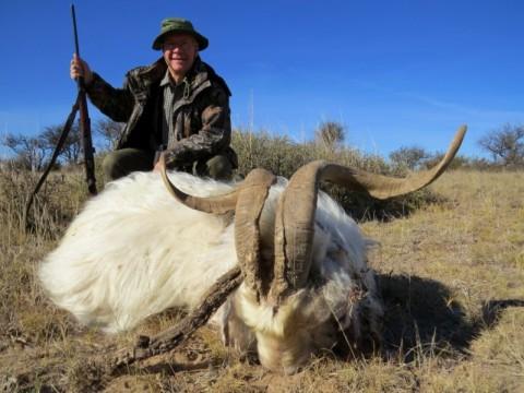 Jagd auf Wildziege in Argentinien - Interhunt - jagen weltweit