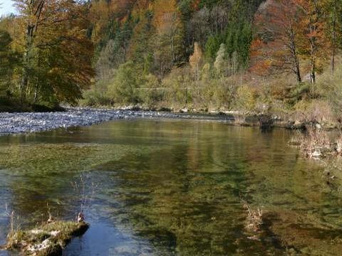 Revier Hollenstein - Ficherdorf Opponitz - Intehunt - Fliegenfischen
