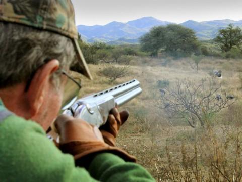 Tauben Jagd in Argentinien - Interhunt - jagen weltweit