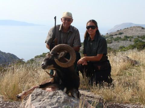 Starker Muffelwidder in Kroatien - Interhunt - jagen weltweit