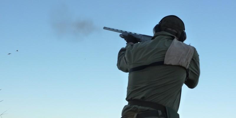 Wachtel Jagd Kroateien - Interhunt - Jagen weltweit