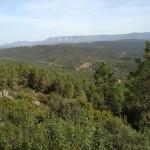 Monteria Jagdgebiet bei Cuenca - Interhunt - jagen weltweit