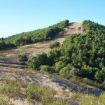 Monteria Jagdgebiet bei Toledo - Interhunt - jagen weltweit